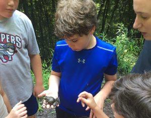 Teen Volunteer Club @ Earthplace