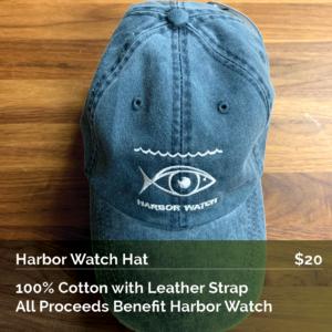 Harbor Watch Baseball Cap
